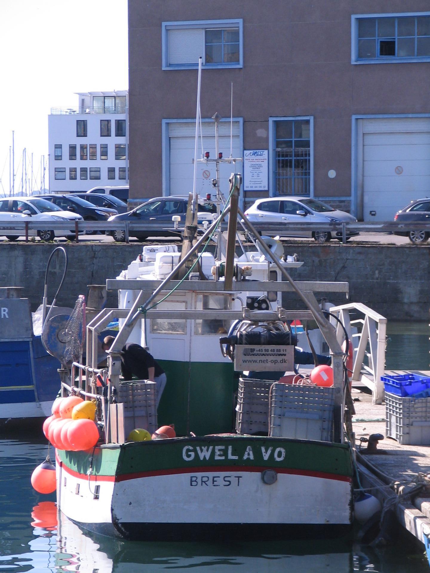 Gwel a vo br176153 5